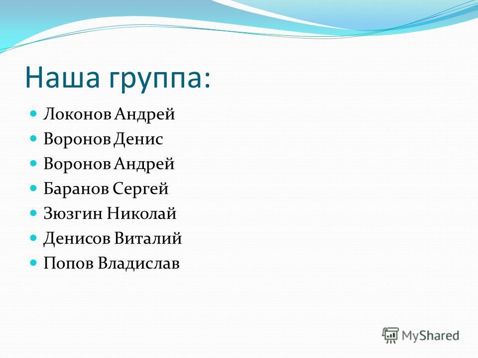 Наша группа: Локонов Андрей Воронов Денис Воронов Андрей Баранов Сергей Зюзгин Николай Денисов Виталий Попов Владислав