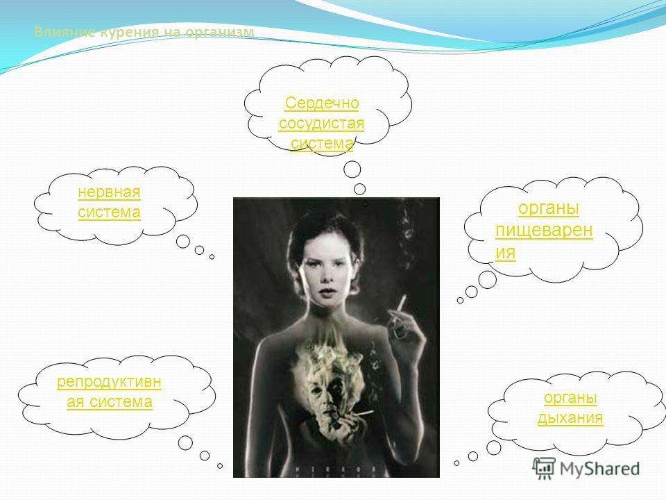 Влияние курения на организм органы пищеварен ия органы пищеварен ия нервная система Сердечно сосудистая система Сердечно сосудистая система органы дыхания репродуктивн ая система