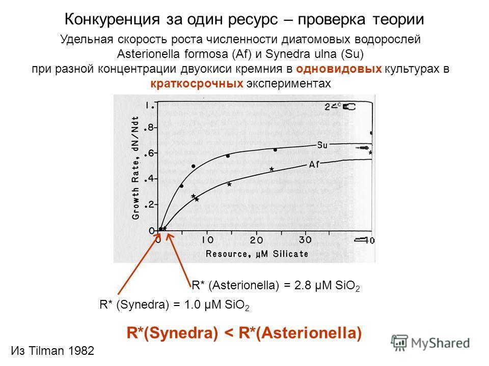Удельная скорость роста численности диатомовых водорослей Asterionella formosa (Af) и Synedra ulna (Su) при разной концентрации двуокиси кремния в одновидовых культурах в краткосрочных экспериментах Конкуренция за один ресурс – проверка теории R* (Sy