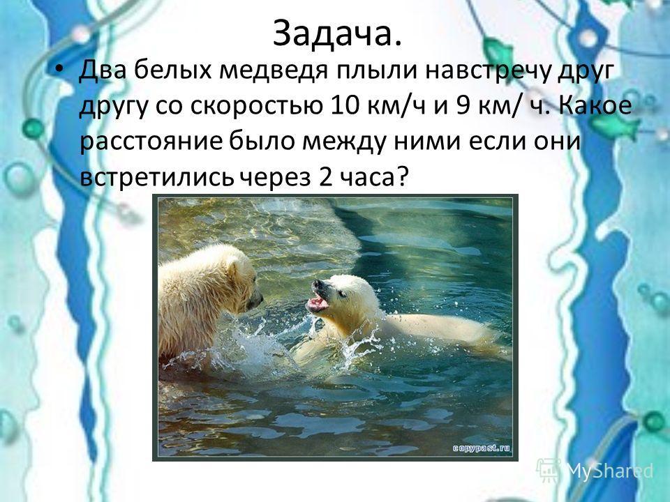 Задача. Два белых медведя плыли навстречу друг другу со скоростью 10 км/ч и 9 км/ ч. Какое расстояние было между ними если они встретились через 2 часа?