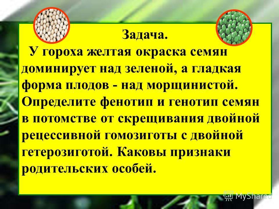 Задача. У гороха желтая окраска семян доминирует над зеленой, а гладкая форма плодов - над морщинистой. Определите фенотип и генотип семян в потомстве от скрещивания двойной рецессивной гомозиготы с двойной гетерозиготой. Каковы признаки родительских