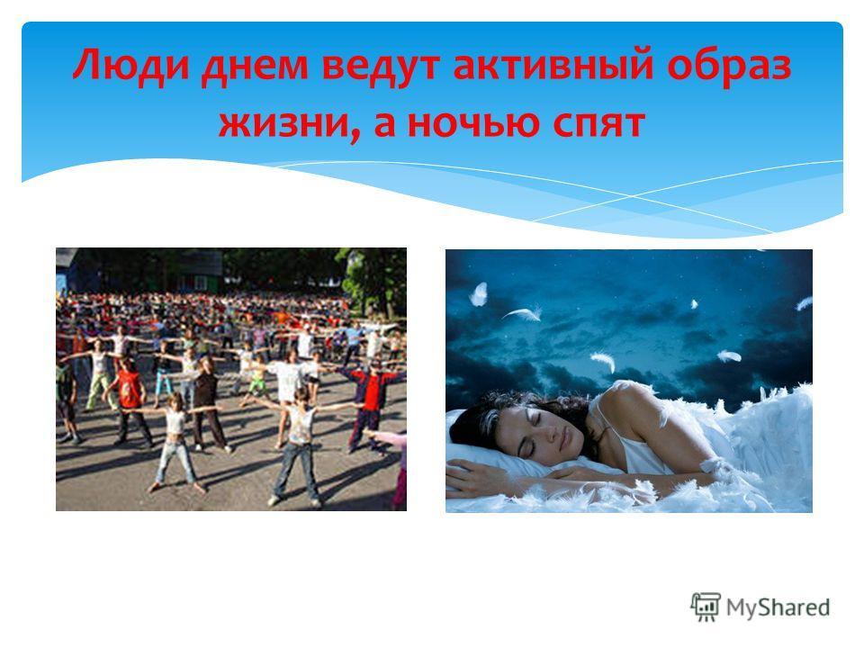 Люди днем ведут активный образ жизни, а ночью спят