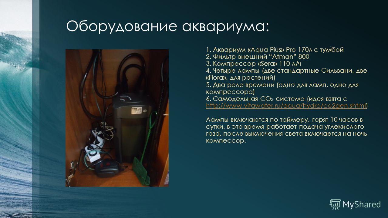 Оборудование аквариума: 1. Аквариум «Aqua Pius» Pro 170л с тумбой 2. Фильтр внешний Atman 800 3. Компрессор «Sera» 110 л/ч 4. Четыре лампы (две стандартные Сильвани, две «Flora», для растений) 5. Два реле времени (одно для ламп, одно для компрессора)