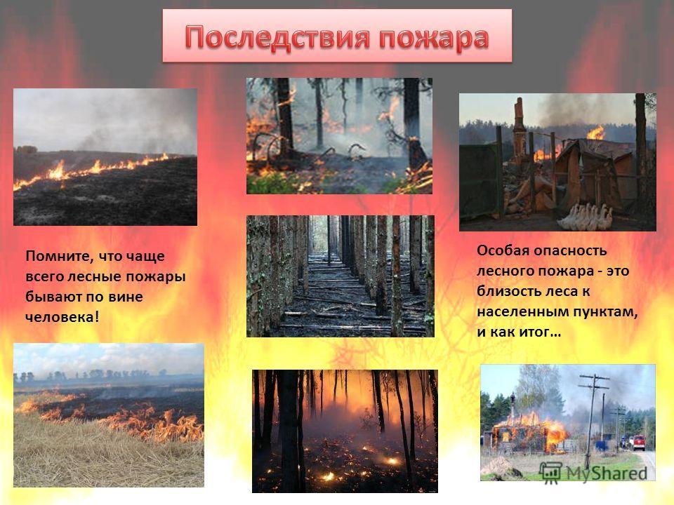 Особая опасность лесного пожара - это близость леса к населенным пунктам, и как итог… Помните, что чаще всего лесные пожары бывают по вине человека!