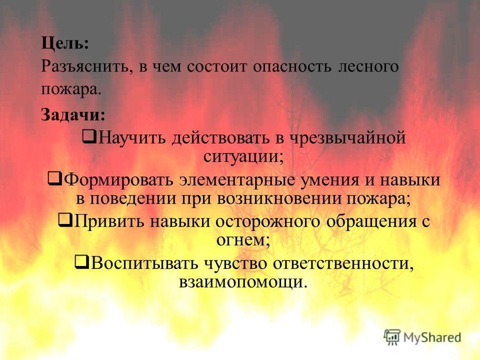 Цель: Разъяснить, в чем состоит опасность лесного пожара. Задачи: Научить действовать в чрезвычайной ситуации; Формировать элементарные умения и навыки в поведении при возникновении пожара; Привить навыки осторожного обращения с огнем; Воспитывать чу