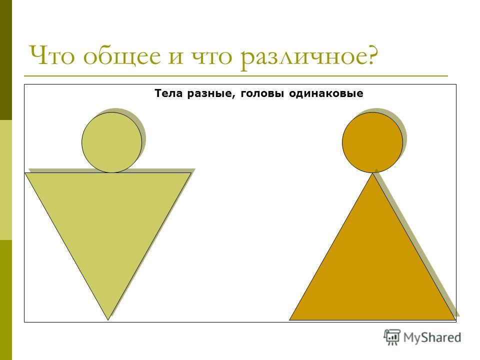 Что общее и что различное? Тела разные, головы одинаковые