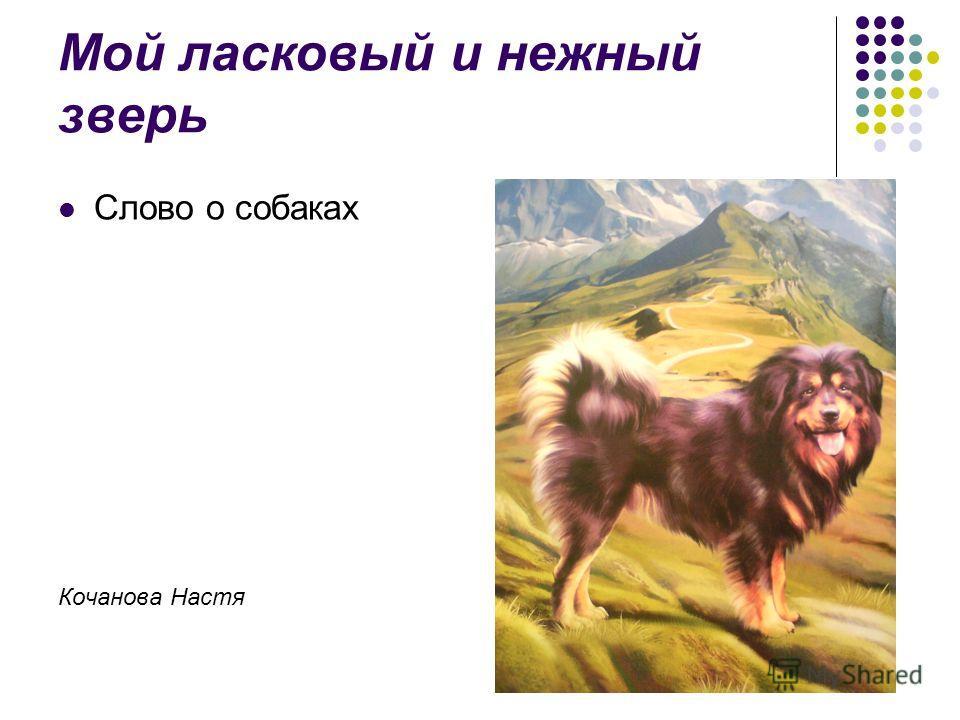 Мой ласковый и нежный зверь Слово о собаках Кочанова Настя