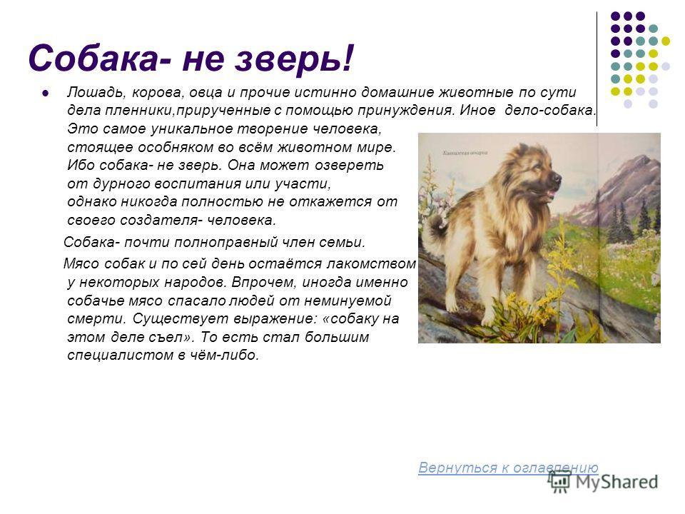 Собака- не зверь! Лошадь, корова, овца и прочие истинно домашние животные по сути дела пленники,прирученные с помощью принуждения. Иное дело-собака. Это самое уникальное творение человека, стоящее особняком во всём животном мире. Ибо собака- не зверь