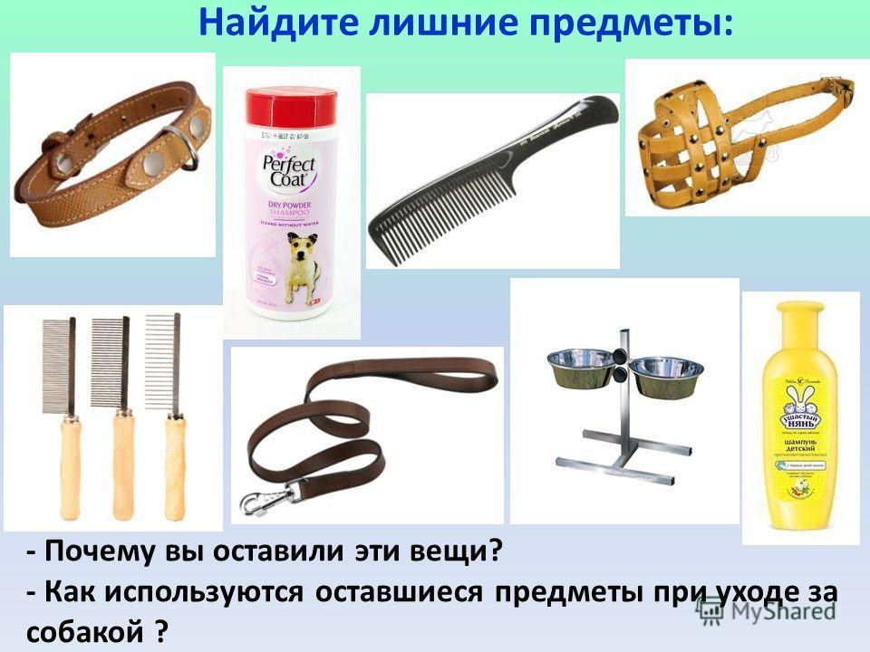 Найдите лишние предметы: - Почему вы оставили эти вещи? - Как используются оставшиеся предметы при уходе за собакой ?