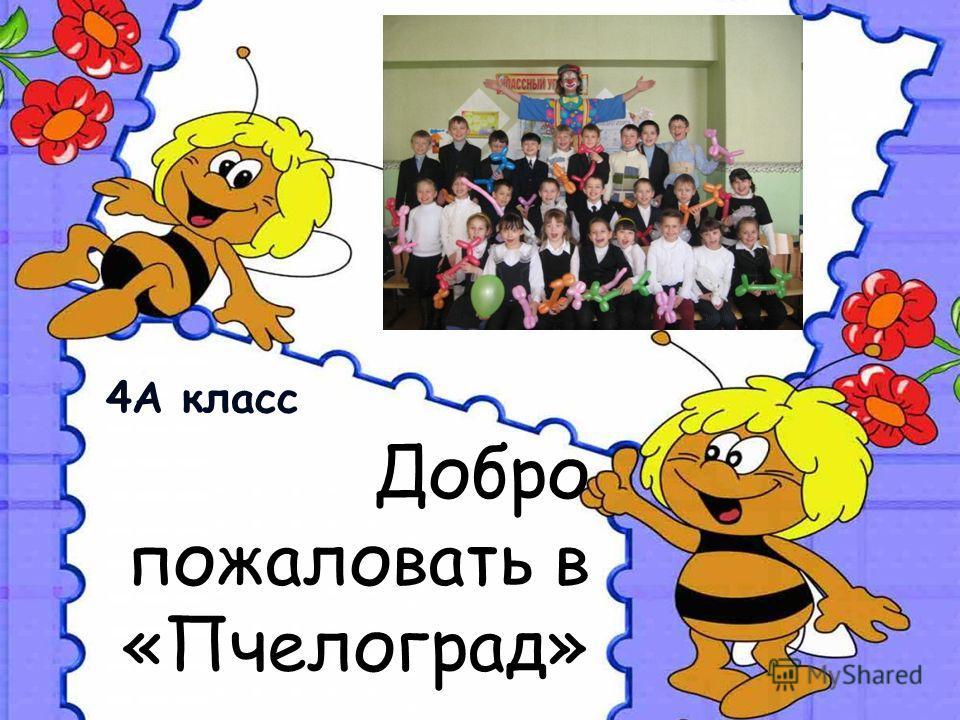 Добро пожаловать в «Пчелоград» 4А класс