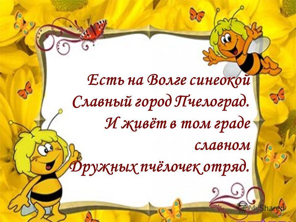 Есть на Волге синеокой Славный город Пчелоград. И живёт в том граде славном Дружных пчёлочек отряд.