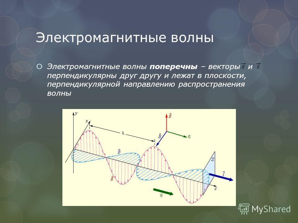 Электромагнитные волны Электромагнитные волны поперечны – векторы и перпендикулярны друг другу и лежат в плоскости, перпендикулярной направлению распространения волны