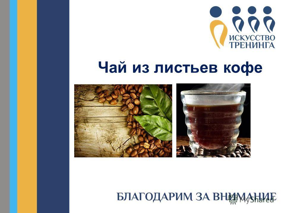 Чай из листьев кофе