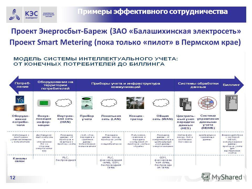 Проект Smart Metering (пока только «пилот» в Пермском крае) 12 Примеры эффективного сотрудничества Проект Энергосбыт-Бареж (ЗАО «Балашихинская электросеть»