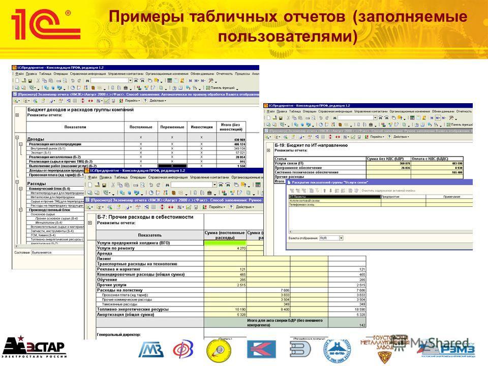 Примеры табличных отчетов (заполняемые пользователями)