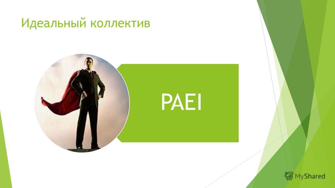 Идеальный коллектив PAEI