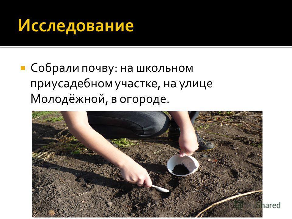 Собрали почву: на школьном приусадебном участке, на улице Молодёжной, в огороде.