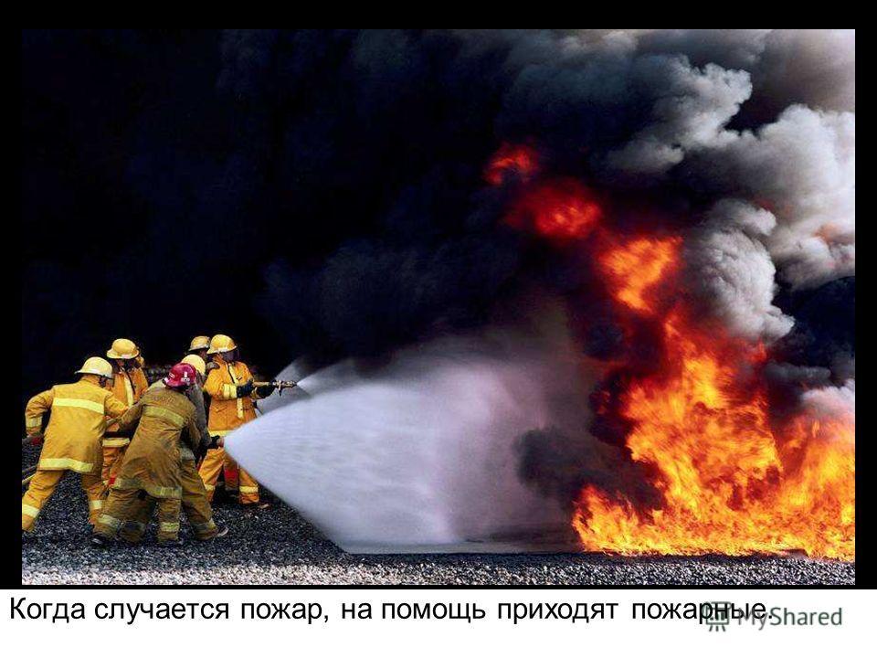 Люди, как правило, забывают потушить костер, и тогда раздуваемые ветром искры разлетаются на большие расстояния, образуя новые очаги возгораний.