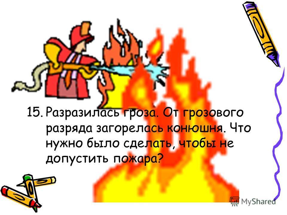 15.Разразилась гроза. От грозового разряда загорелась конюшня. Что нужно было сделать, чтобы не допустить пожара?