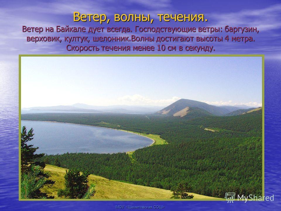 Ветер, волны, течения. Ветер на Байкале дует всегда. Господствующие ветры: баргузин, верховик, култук, шелонник.Волны достигают высоты 4 метра. Скорость течения менее 10 см в секунду.