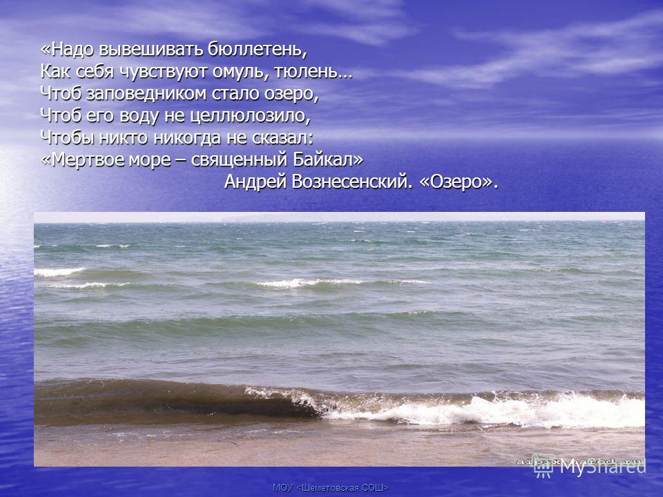 МОУ «Надо вывешивать бюллетень, Как себя чувствуют омуль, тюлень… Чтоб заповедником стало озеро, Чтоб его воду не целлюлозило, Чтобы никто никогда не сказал: «Мертвое море – священный Байкал» Андрей Вознесенский. «Озеро».