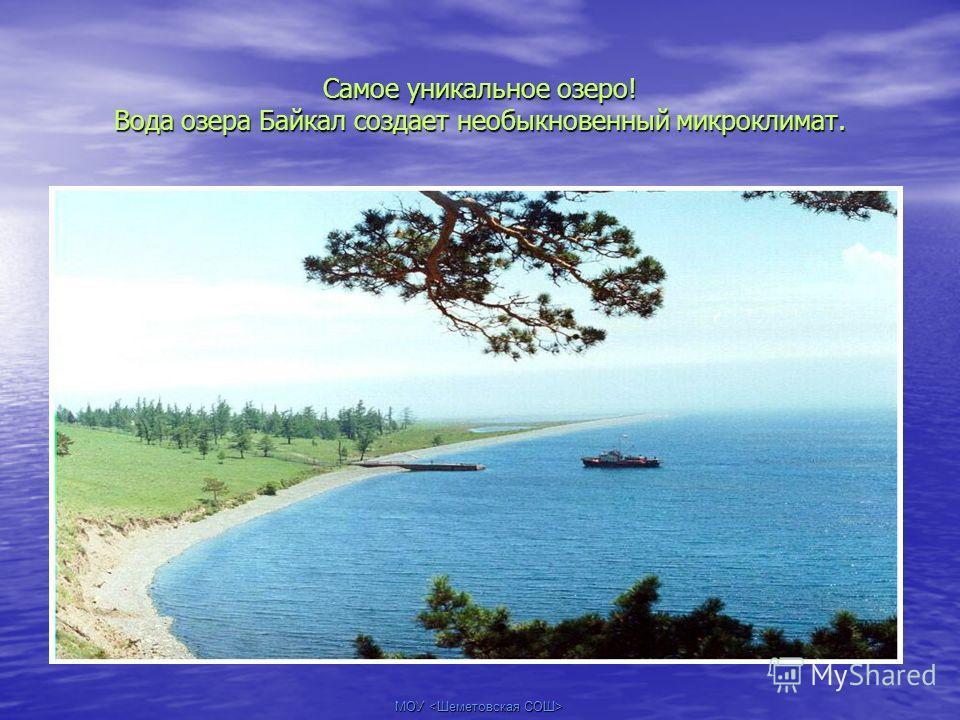 МОУ Самое уникальное озеро! Вода озера Байкал создает необыкновенный микроклимат.