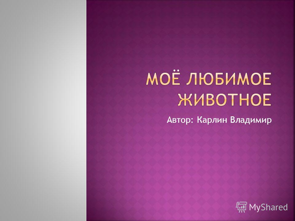 Автор: Карлин Владимир