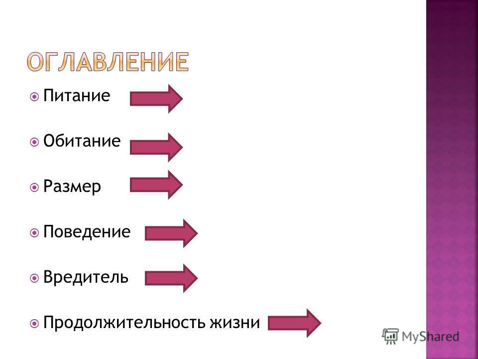 Питание Обитание Размер Поведение Вредитель Продолжительность жизни