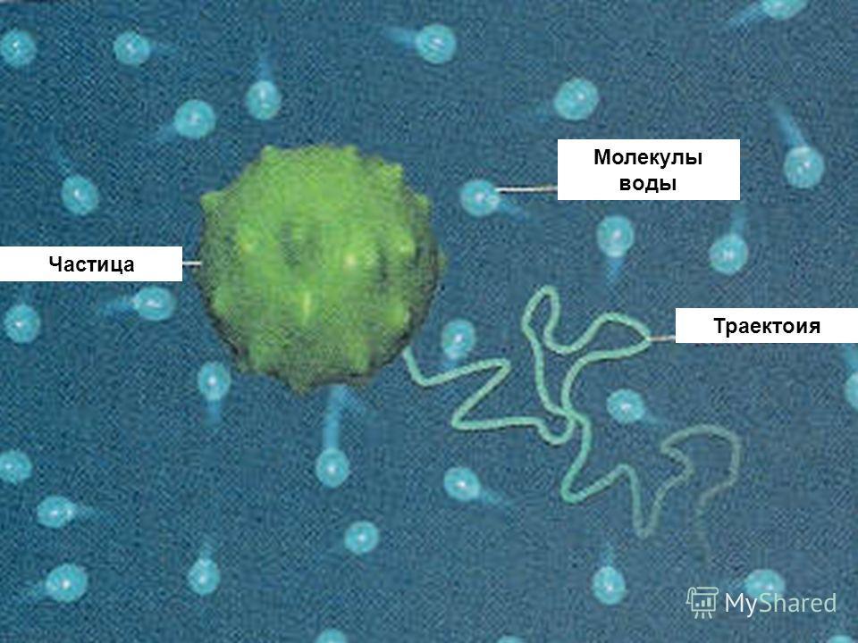 Молекулы воды Частица Траектоия