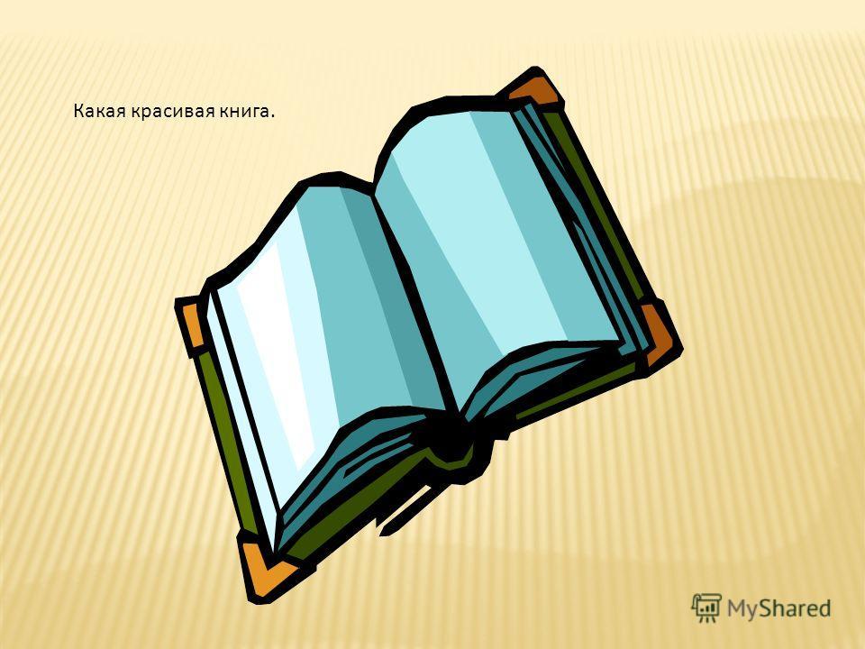 Какая красивая книга.