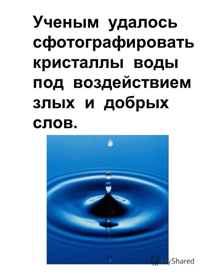 Ученым удалось сфотографировать кристаллы воды под воздействием злых и добрых слов.