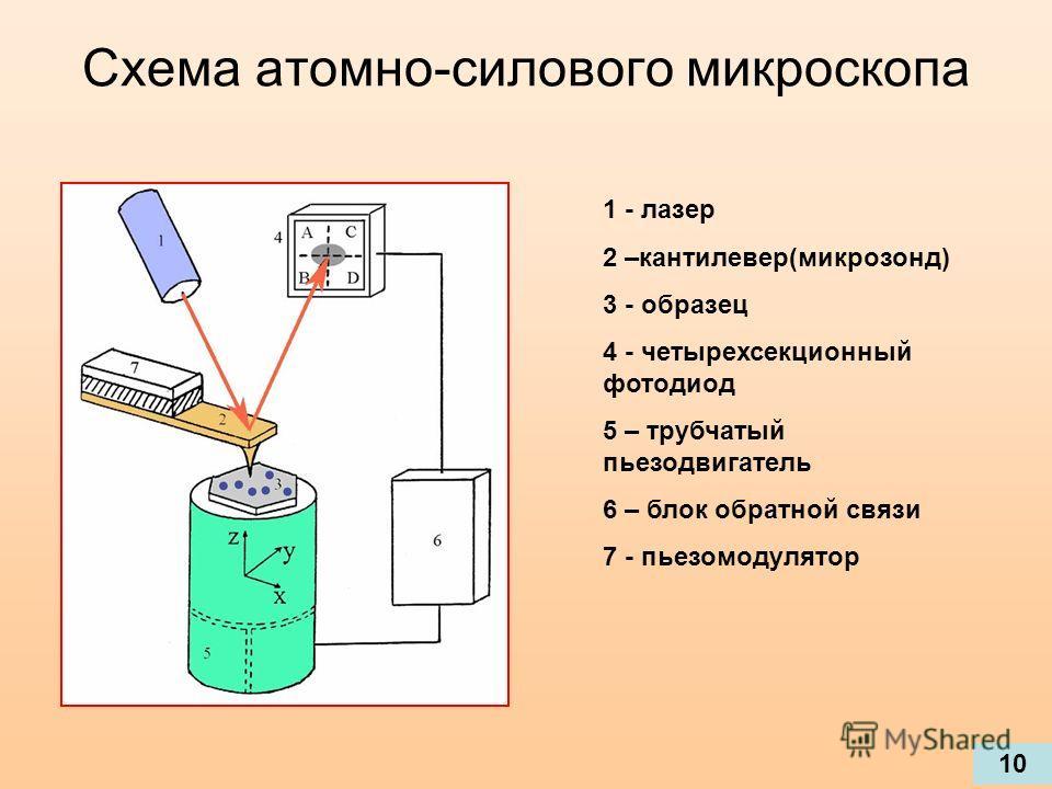 Схема атомно-силового микроскопа 1 - лазер 2 –кантилевер(микрозонд) 3 - образец 4 - четырехсекционный фотодиод 5 – трубчатый пьезодвигатель 6 – блок обратной связи 7 - пьезомодулятор 10