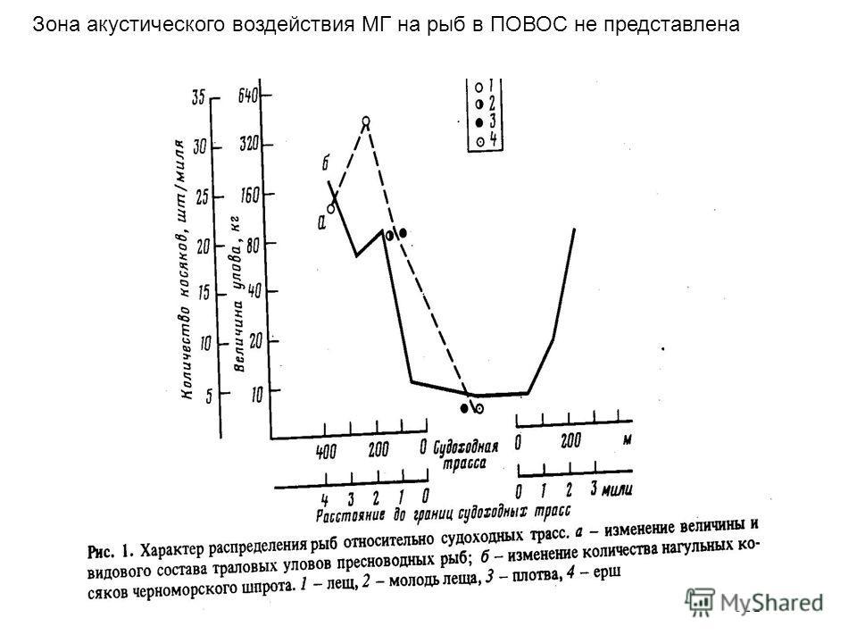 Зона акустического воздействия МГ на рыб в ПОВОС не представлена