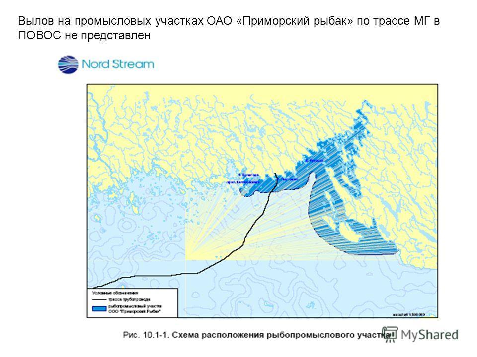 Вылов на промысловых участках ОАО «Приморский рыбак» по трассе МГ в ПОВОС не представлен