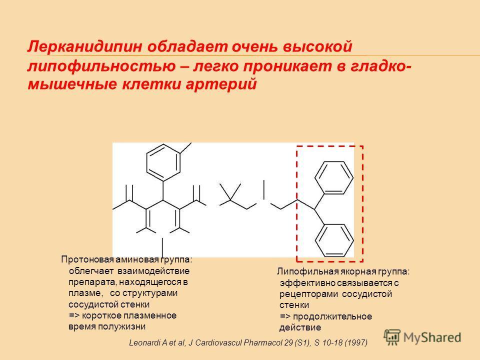 Липофильная якорная группа: эффективно связывается с рецепторами сосудистой стенки => продолжительное действие Протоновая аминовая группа: облегчает взаимодействие препарата, находящегося в плазме, со структурами сосудистой стенки => короткое плазмен