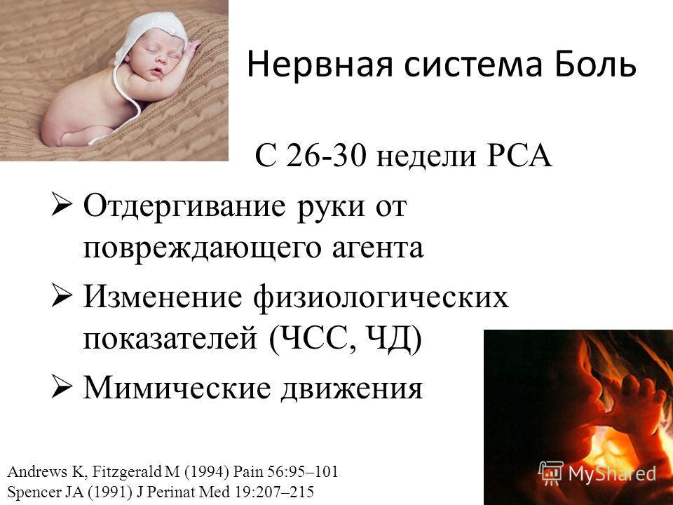 Нервная система Боль С 26-30 недели РСА Отдергивание руки от повреждающего агента Изменение физиологических показателей (ЧСС, ЧД) Мимические движения Andrews K, Fitzgerald M (1994) Pain 56:95–101 Spencer JA (1991) J Perinat Med 19:207–215