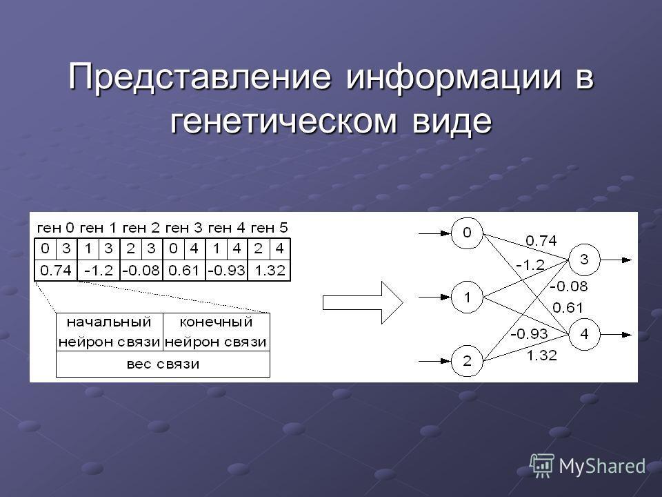 Представление информации в генетическом виде