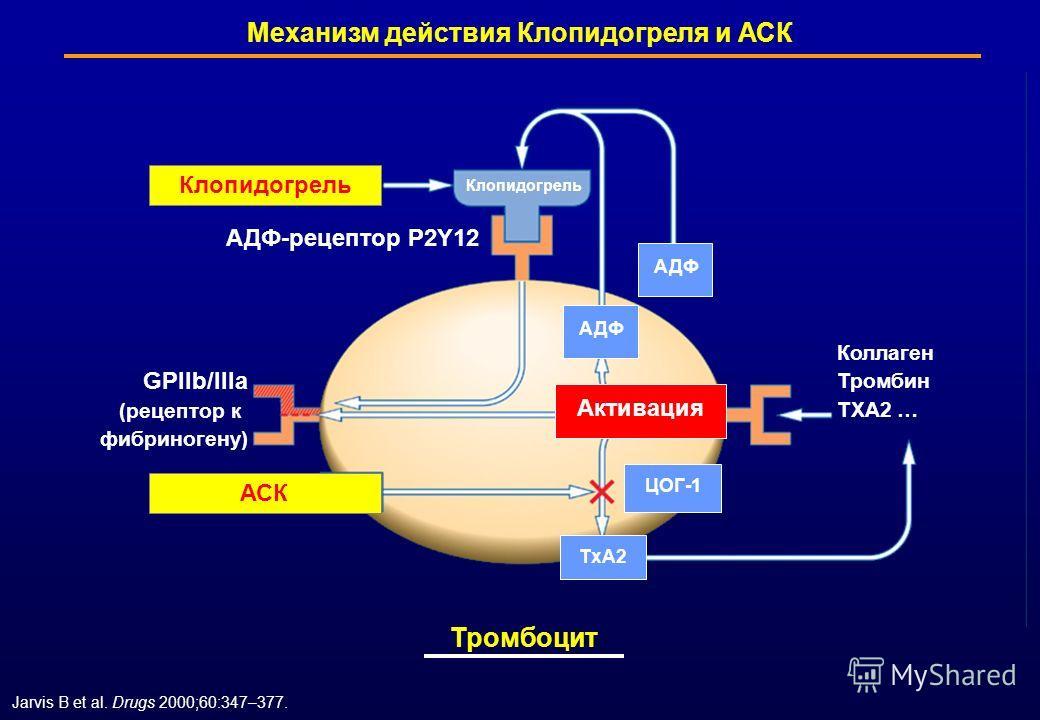 Jarvis B et al. Drugs 2000;60:347–377. Механизм действия Клопидогреля и АСК Клопидогрель АСК ЦОГ-1 АДФ GPllb/llla (рецептор к фибриногену) Коллаген Тромбин ТХА2 … Активация TхA2TхA2 АДФ-рецептор Р2Y12 АСК Клопидогрель АДФ Тромбоцит