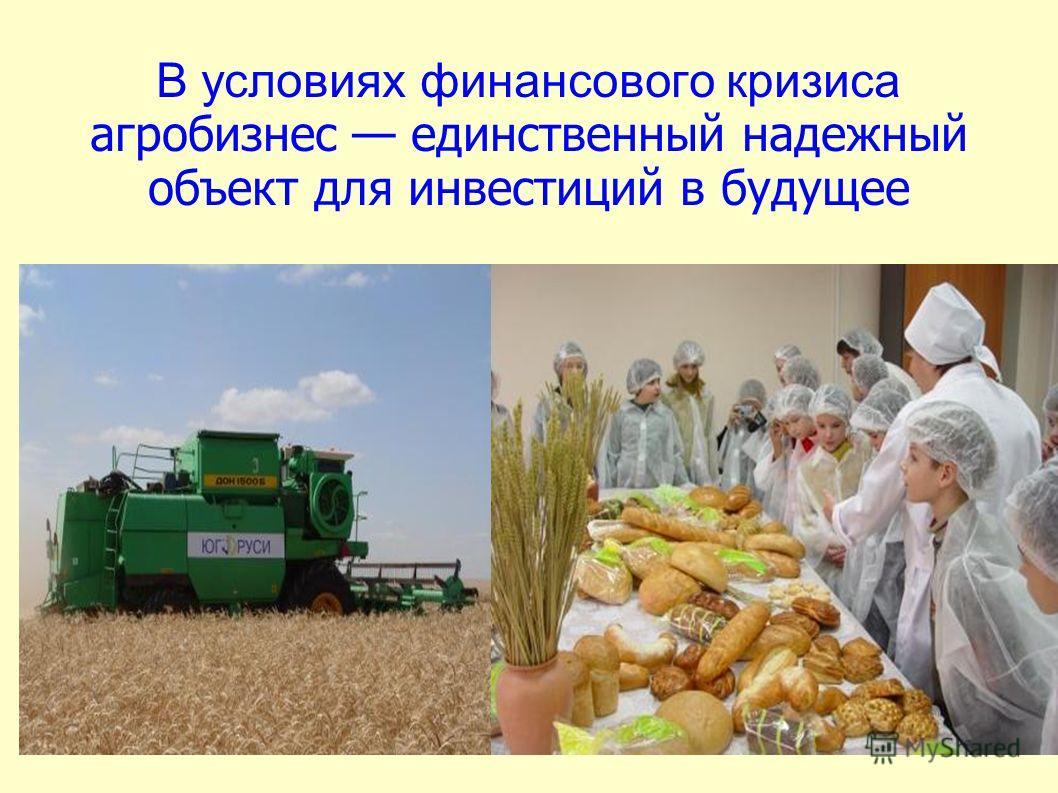 В условиях финансового кризиса агробизнес единственный надежный объект для инвестиций в будущее