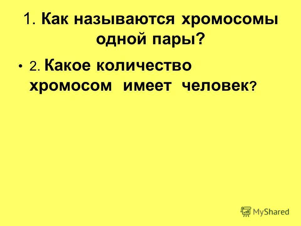 1. Как называются хромосомы одной пары? 2. Какое количество хромосом имеет человек ?