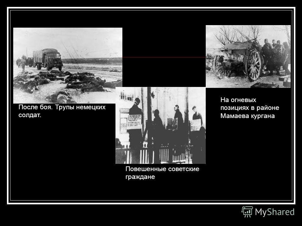 После боя. Трупы немецких солдат. Повешенные советские граждане На огневых позициях в районе Мамаева кургана