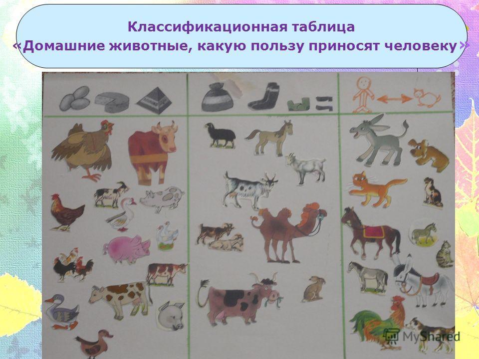 Классификационная таблица «Домашние животные, какую пользу приносят человеку »
