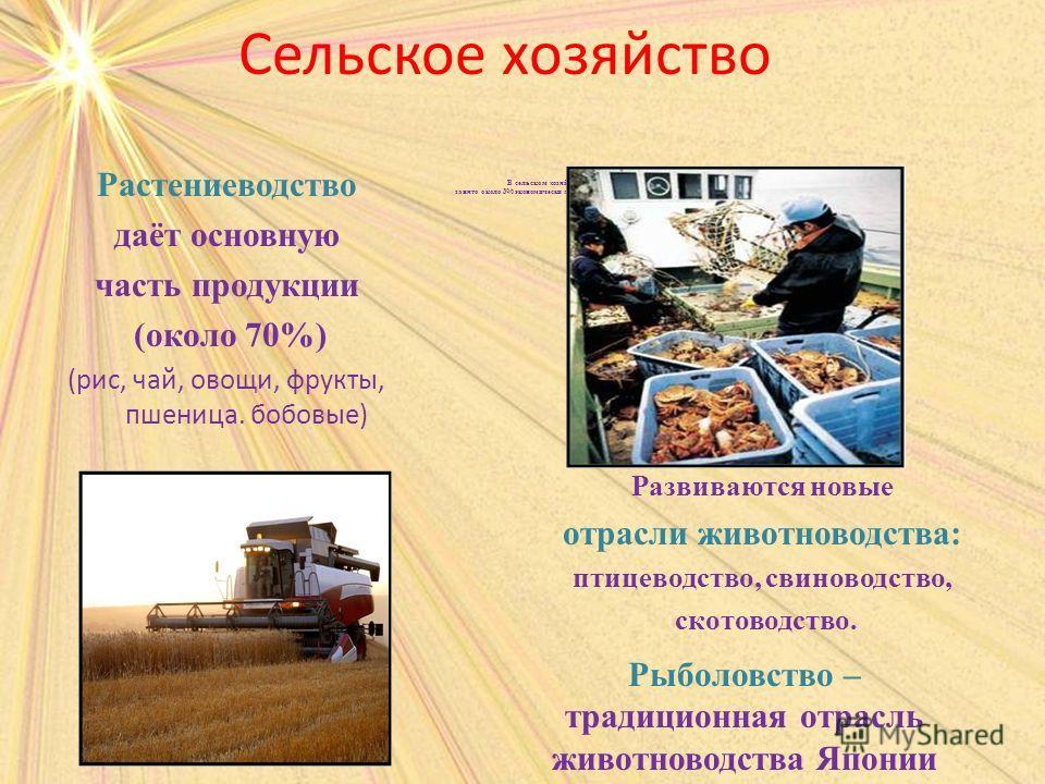 Сельское хозяйство В сельском хозяйстве занято около 3% экономически активного населения. Растениеводство даёт основную часть продукции (около 70%) (рис, чай, овощи, фрукты, пшеница. бобовые) Развиваются новые отрасли животноводства: птицеводство, св