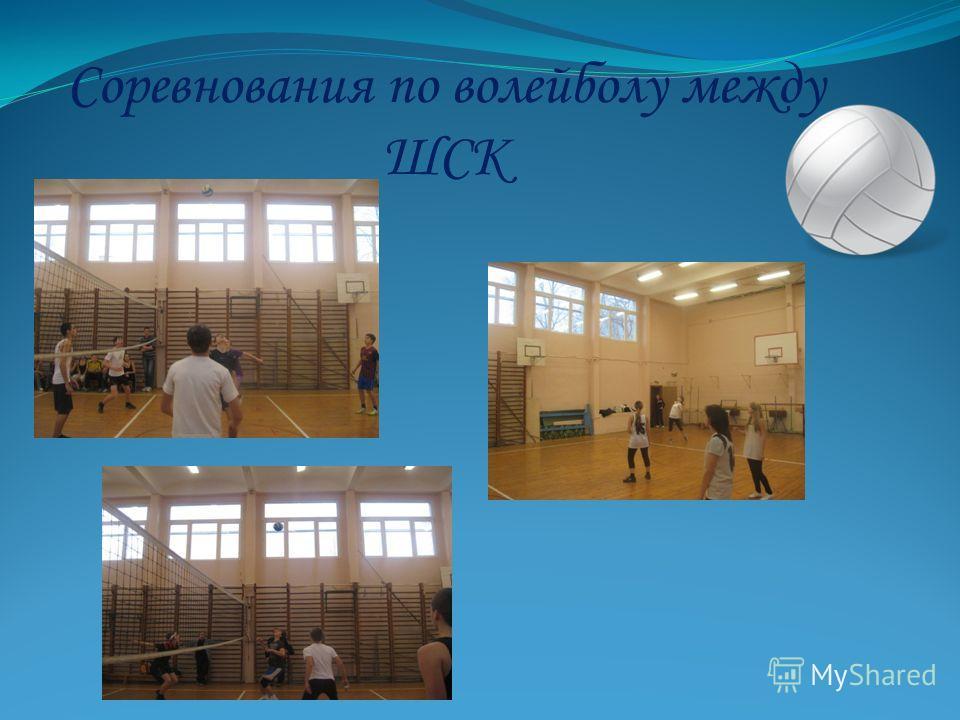Соревнования по волейболу между ШСК