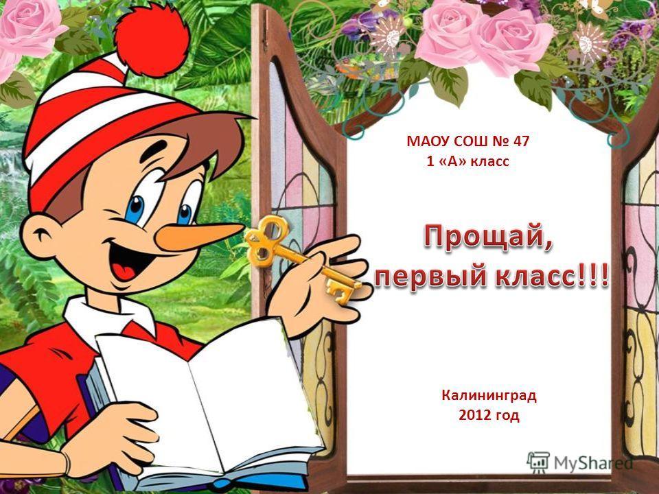Калининград 2012 год МАОУ СОШ 47 1 «А» класс
