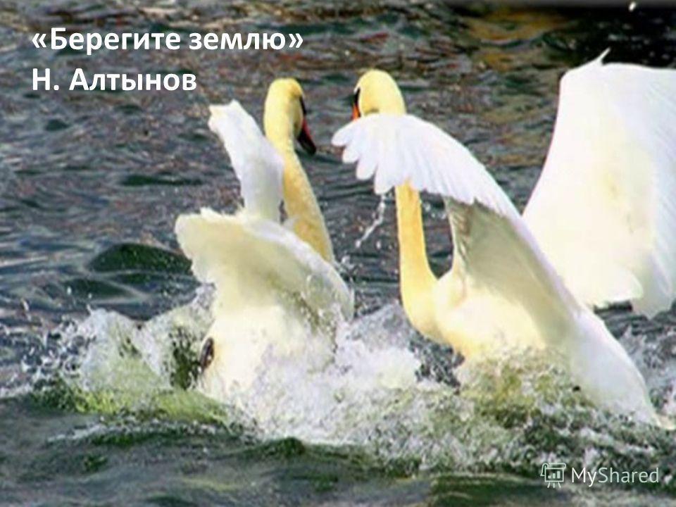 «Берегите землю» Н. Алтынов