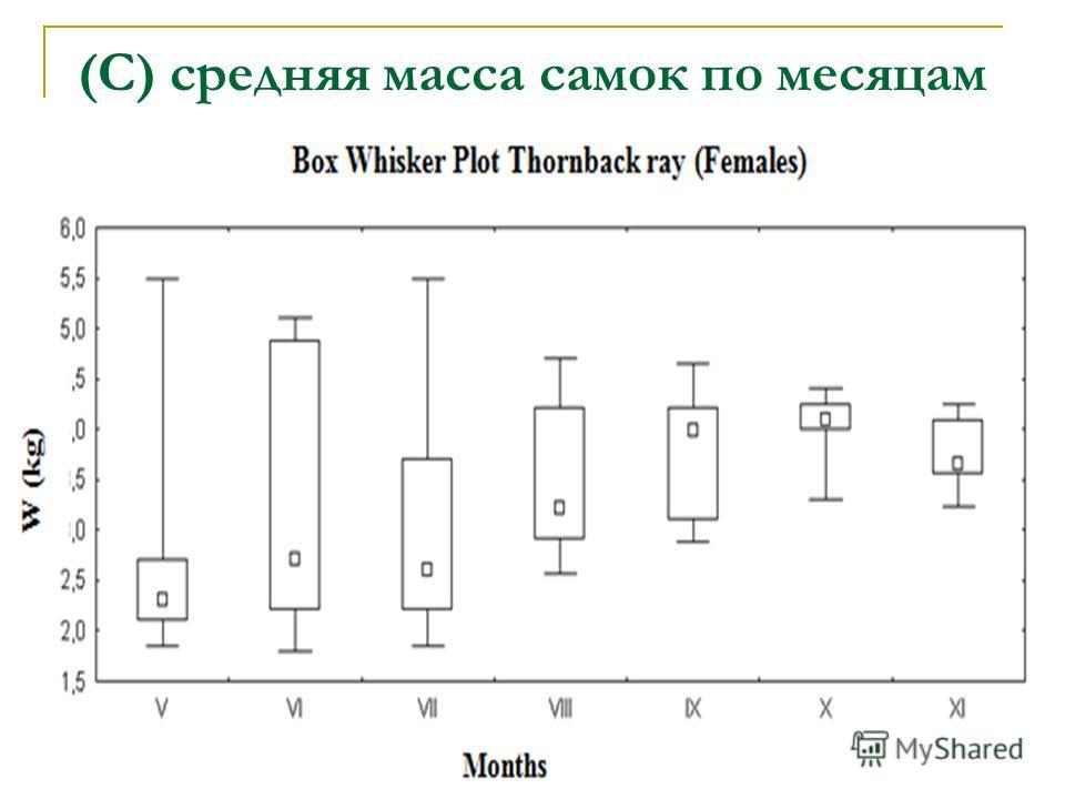 (С) средняя масса самок по месяцам