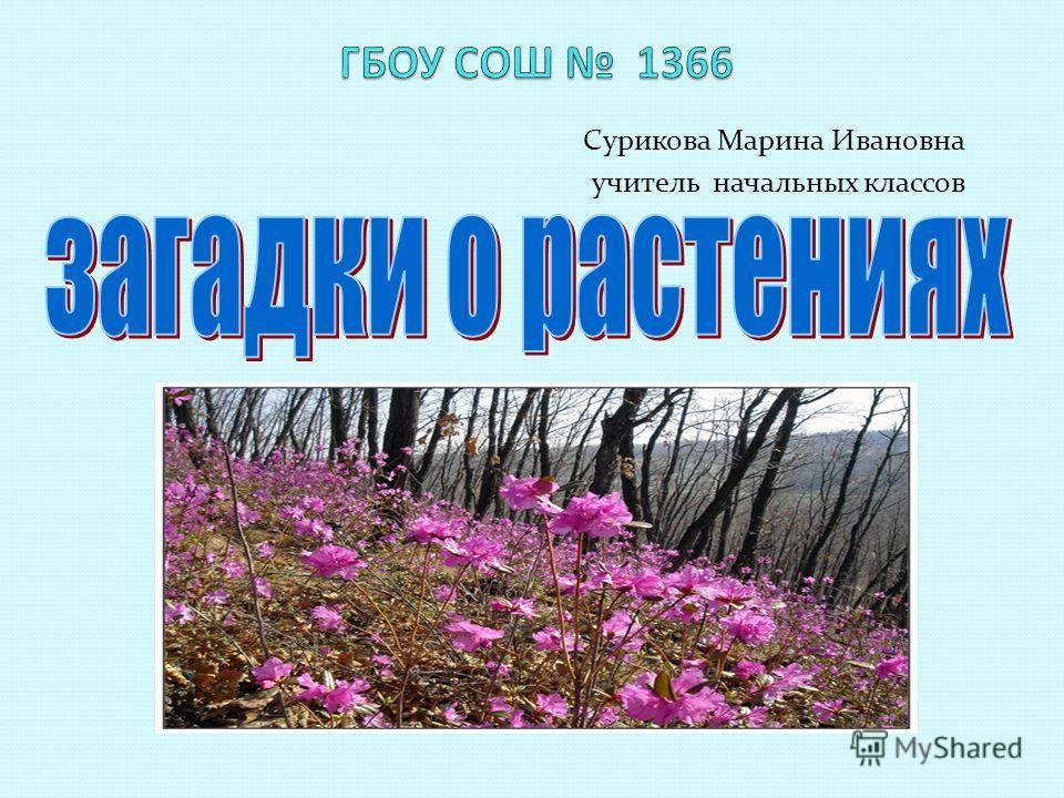 Сурикова Марина Ивановна учитель начальных классов