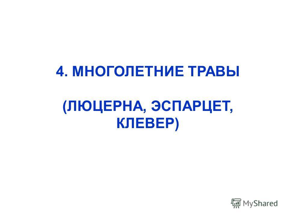 4. МНОГОЛЕТНИЕ ТРАВЫ (ЛЮЦЕРНА, ЭСПАРЦЕТ, КЛЕВЕР)