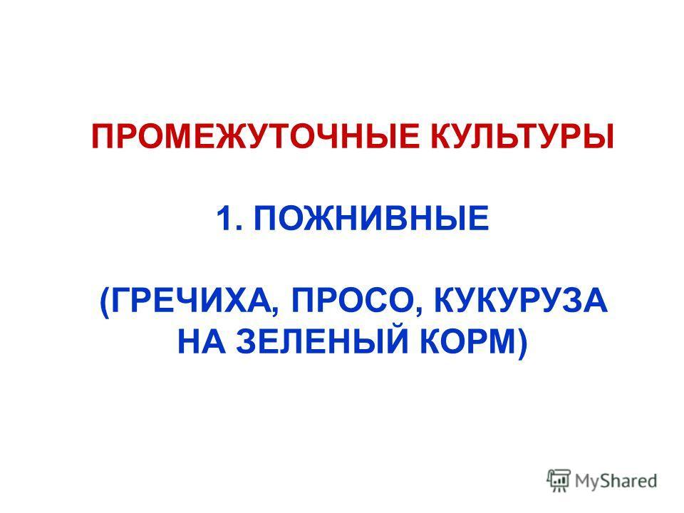 ПРОМЕЖУТОЧНЫЕ КУЛЬТУРЫ 1. ПОЖНИВНЫЕ (ГРЕЧИХА, ПРОСО, КУКУРУЗА НА ЗЕЛЕНЫЙ КОРМ)